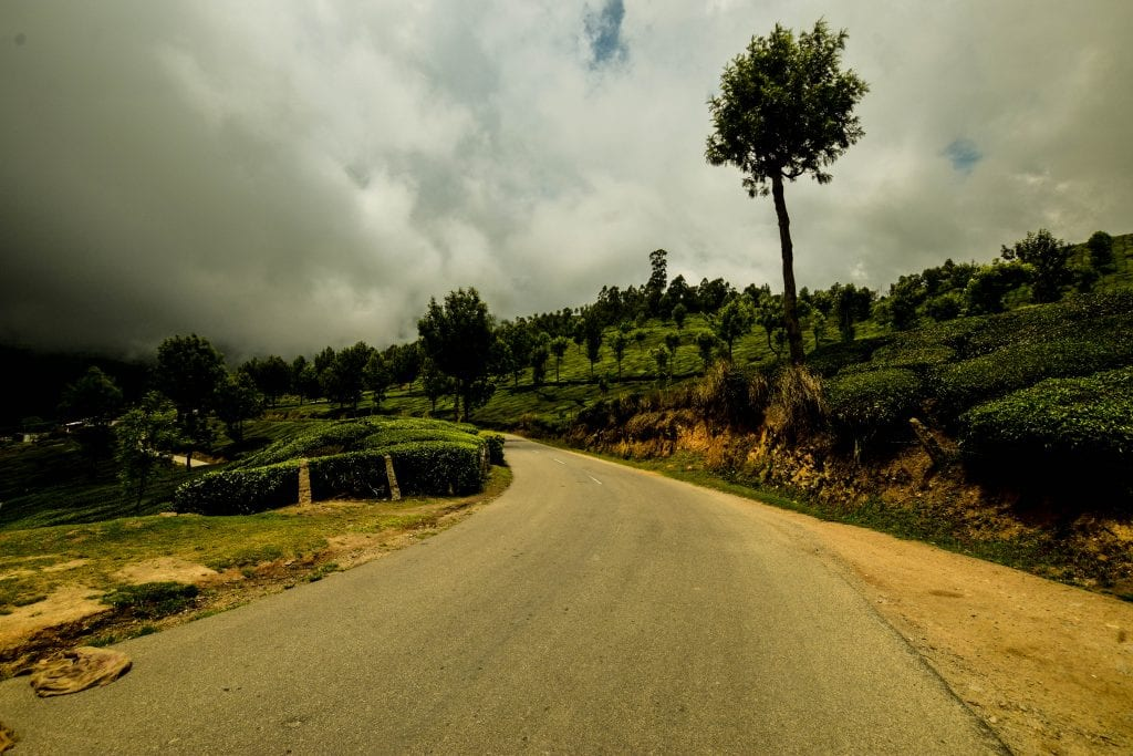 Picture of road on the way to Munnar